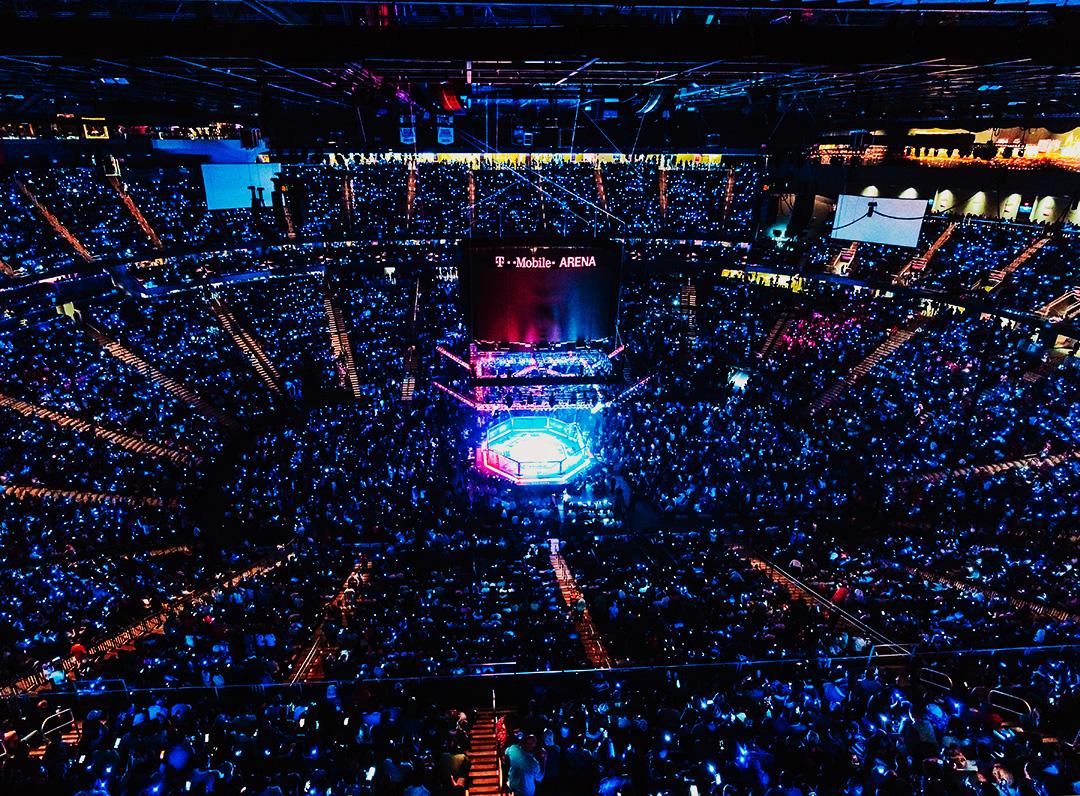 UFC 264 Poirier vs McGregor lll